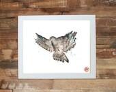 Hawk Spirit Animal Symbol Giclee Fine Art Print