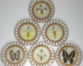 set of six vintage bamboo butterfly coasters