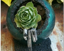 Blue Green Shimmer Crackle Glass Fall Planter with Silver Crystals - Garden Decoration Accent - Hen & Chicks Indoor Planter with Live Plant