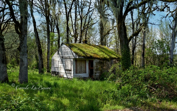 COTTAGE in the WOODS ~ Travel Photography ~ Country and Rustic ~ Color or Black and White ~