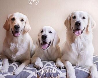 Savi Dog Bed * Versailles Collection * Raspberry * Medium Large * Personalize * Lattice Bamboo * Pillow * Custom Embroidery