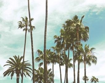 Palm Trees Art, Photography Print, Beach Wall Decor, California Print, Wall Art, Tropical Decor, Nature Art, Palm Tree Photo, 16 x 20 Print
