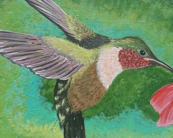 Original Acrylic Painting, 8 in. X 10 in. Panel Canvas. Hummingbird in Flight.