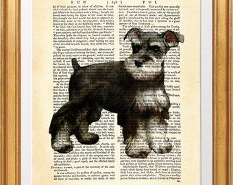 Miniature Schnauzer Dog, beautiful Art Print on Upcycled Dictionary Book page 8'' x 10'' inches