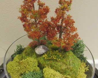 Glass Dome Terrarium with Fall Trees and Flowers Scenery, Nature Scene, Nature Art, Home Decor
