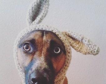 Bunny Ear Dog Hood
