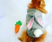 BUNNY EASTER GRAY Hoodie Button Up for Small Dogs