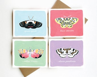 Moths Blank Card Set - Lepidoptera Notecard Set - Set of 8 Cards