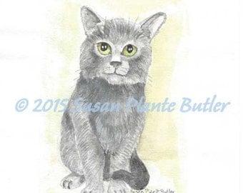 Cat study # 4  - Grey cat sitting