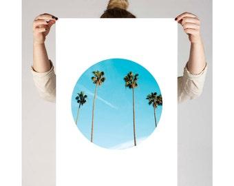 Circle Print, Palm tree, Geometric Print, Circle Art, Palm Tree Print, Printable Wall Art, Circle Photos, Circle Wall Art, Circle Photo