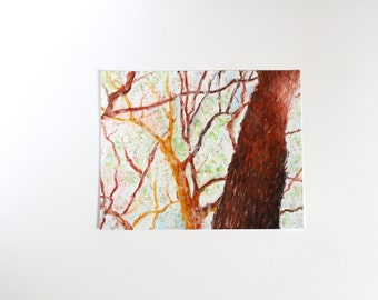 Original Oil Pastel Trees, Tree Drawing, Pastel Trees, Nature Drawing, Forest Drawing, Small Oil Pastel Art