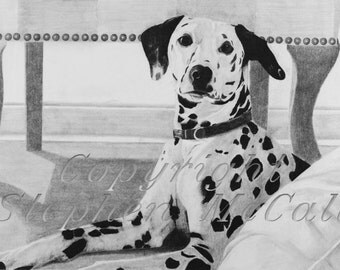 Giclee fine art print of original Dalmation charcoal drawing, dalmatian, dog art, dog drawings, dog paintings, dog portraits