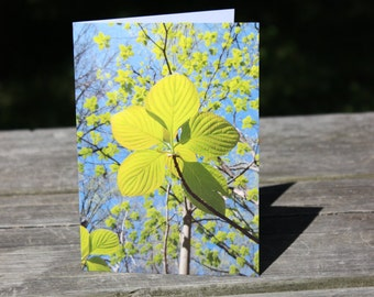CARD 22 Sixty Seconds of Sunshine. Connect with Someone You CARE About. Peak Inside the Card! Free US shipping.