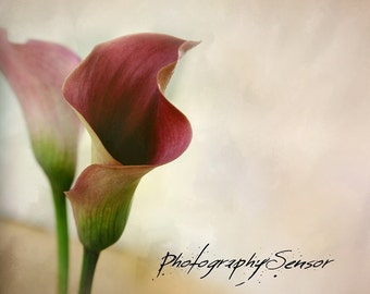 Flowers to rust and coral shades, Romantic Art, Still Life, Soft edges, Nature Photo, Photo Print, Fine Art Print Summer