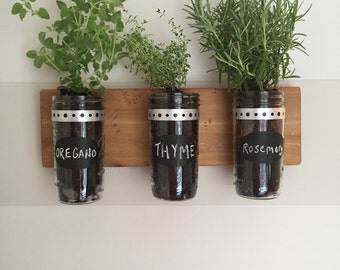 Hanging Herb/Plant/Succulent Garden/Mason Jar Organization- A Great Housewarming Gift!