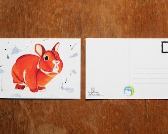 Curious Netherland Dwarf Rabbit Watercolor Postcard Print