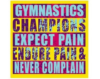 Gymnastics 24 7 365 days a year t shirt for Never complain never explain t shirt