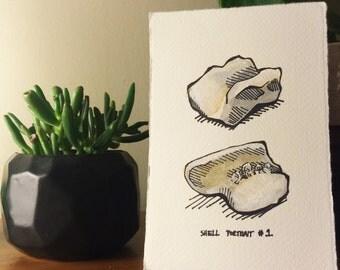 Shell Portrait No 1