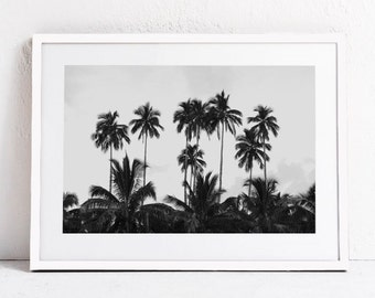 Palm Trees Print, Jungle Art, Black and White Print, Landscape Print, Tropical Art PRINTABLE Photography DIGITAL DOWNLOAD Print, Large Art