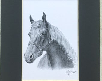 Matted 8x10 Charcoal Horse Portrait black and white art picture print Horse drawing horse picture horse print
