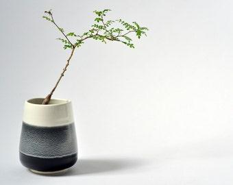Porcelain Ceramic Planter Pot