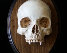 Vampire Skull Wall Plaque