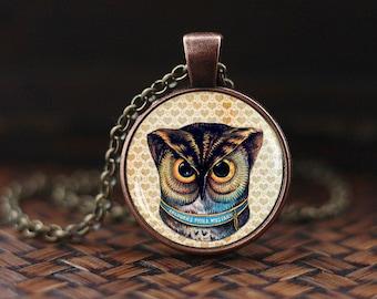 Owl art pendant, Owl necklace, vitage owl necklace, vintage art glass pendant, owl art, glass dome pendant
