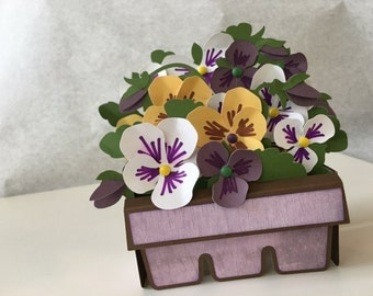 Pansy Box Greeting Card - 3D - Pop Up