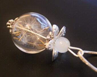 Dandelions short chain
