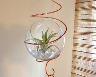 Hanging terrarium / air plant terrarium / succulent terrarium / hanging planter / tillandsia terrarium / 5 link chain with terrarium