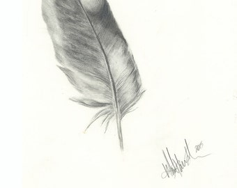 Print of original pencil drawing of a feather