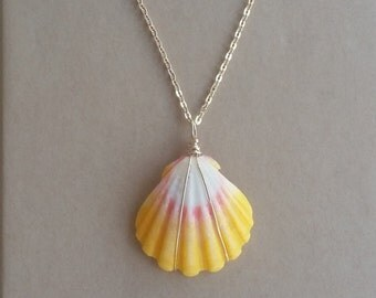 Hawaiian Sunrise Shell Necklace.Wire wrapped in gold with a 16in. gold chain.