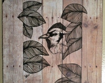 Blue Jay in Wood