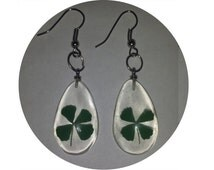 Real Four Leaf Clover Earrngs - Silver - LUCKY
