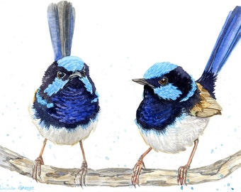 Fairy Wrens Bird Watercolor Painting Print in sizes 5x7, 8x10, and 11x14