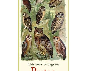 Personalized Bookplates - Vintage Owls - Teacher's Gift - Nature, Bird Lover, Ex Libris