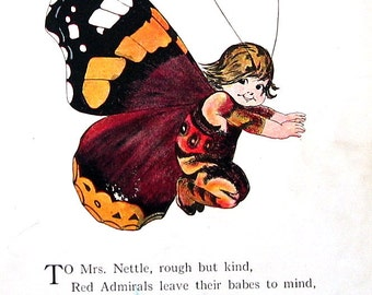 Red Admiral Butterfly , Cosmopolite Butterfly - 1914 Antique Book Page - Butterfly Babies, Butterfly Children - 9 x 6