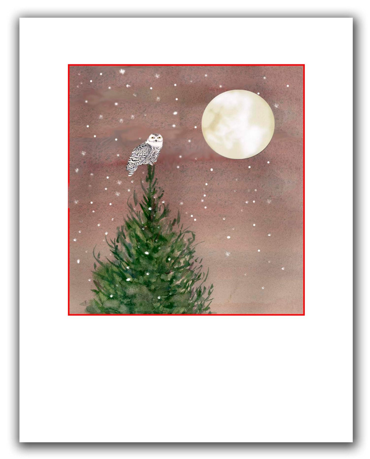 Snowy owl Christmas cards. 10 per boxed set.woodland cards