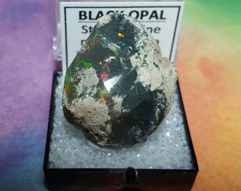 Sale BLACK OPAL 10.6 Gram Rare Natural Rainbow Flash Desert Black Opal Gemstone In Perky Mineral Specimen Box From Ethiopia Sale