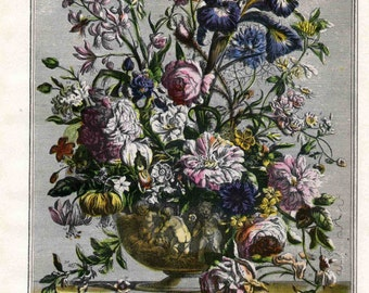 June Flower Arrangement Book Plate- Botanical Engraving Art Print- Furber Seed Catalog Artwork- baby birth wedding anniversary gift idea