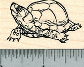 Turtle Rubber Stamp, Tortoise E31017 Wood Mounted