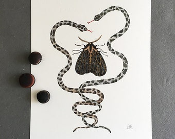Evermore, serpents and moth, original watercolor painting