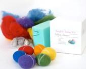 Needle Felting Kit Beginner - Felted Pebble Kit - Wool Stone Rock Kit - DIY Craft Kit - Children - Kids - Rainbow