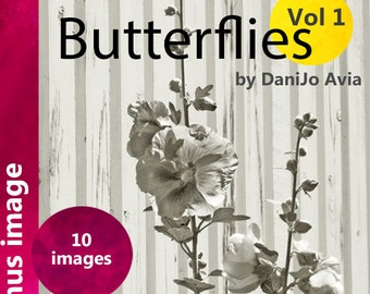 Adult Coloring Book, Blossoms & Butterflies - Vol 1. gray scale coloring for artists of all ages