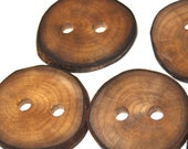 Rustic Natural Wood Buttons, Handmade Wooden Tree Branch Buttons, Ash Wood Buttons, 1 5/8 Inches, Set of 6