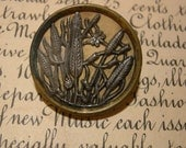 Large Antique Picture Button  - Reeds And Pods