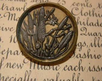 Large Antique Picture Button  - Reeds And Pods - 1 1/8 Inches - Brass And Steel