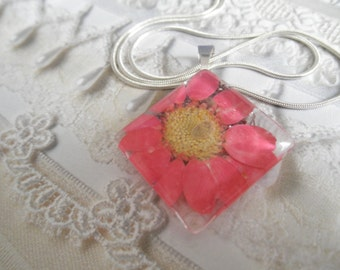 Pink Daisy Domed Square Glass Pressed Flower Pendant-Symbolizes Loyal Love, Innocence-Nature's Wearable Art-Gifts Under 25