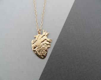 anatomical heart necklace, heart necklace, gold heart, heart jewelry, valentines gift, gift for her