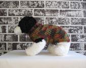Fall colors dog sweater, xs dog sweater, small dog sweater, crochet dog sweater